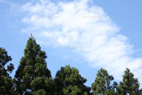 空と雲 FYI00322913