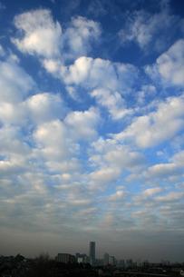 みなとみらいの空と雲 FYI00322926
