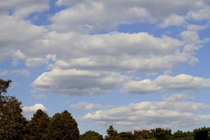 秋の雲 FYI00322943