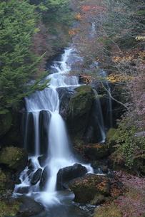 竜頭の滝 FYI00322948