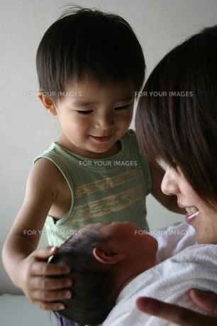妹の誕生 FYI00322957