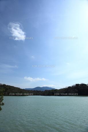 池と青空 FYI00323316
