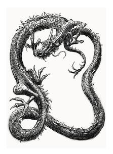 ドラゴン水墨画 FYI00323645