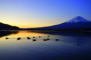 河口湖の夜明け FYI00324210
