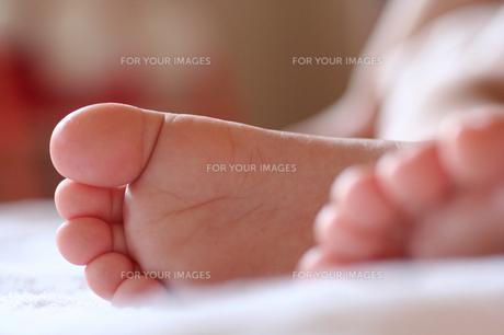 幼児の足 FYI00325187