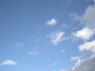 青空 FYI00332292