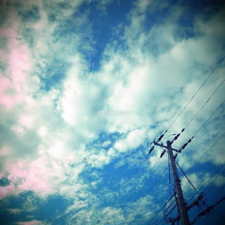 空と電線 FYI00333683