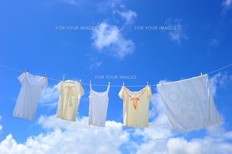 洗濯物と青空 FYI00333915