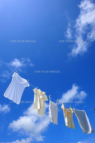 洗濯物と青空 FYI00333926