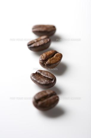 コーヒー豆 FYI00334131