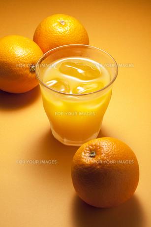 オレンジジュース FYI00334226