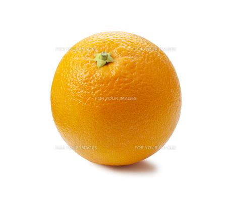 オレンジ FYI00334483