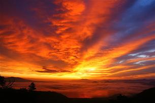 雲海の夜明け FYI00335546