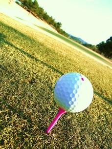 ゴルフボール FYI00335604