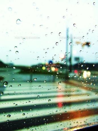 雨の横断歩道 FYI00335612