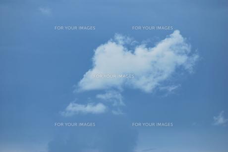 黒い雲と白い雲 FYI00335751
