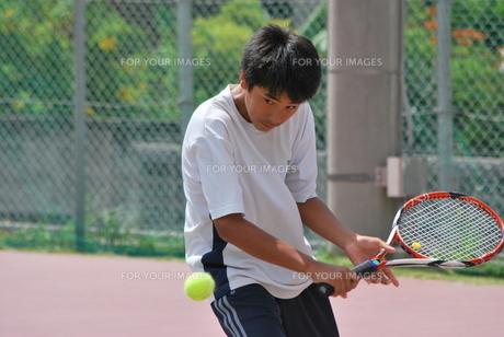 テニスプレーヤー FYI00335958
