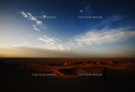 砂漠 FYI00336421