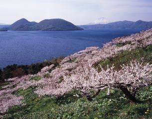 洞爺湖春景色 FYI00336845