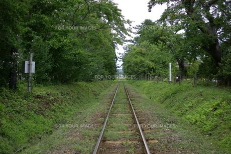 芦野公園駅から見た線路 FYI00364226