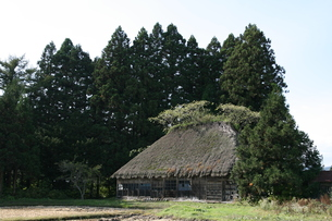 茅葺き屋根の旧家 FYI00364237