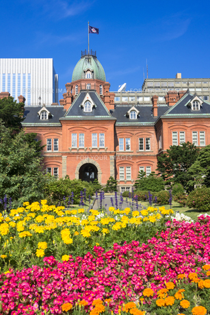 赤レンガ造りの北海道庁旧庁舎 FYI00365188