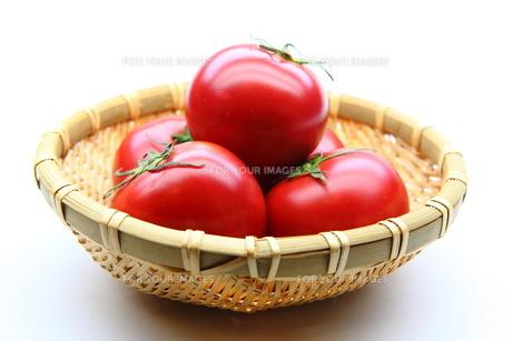 トマト FYI00367583