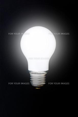 黒背景に白熱電球 FYI00381749