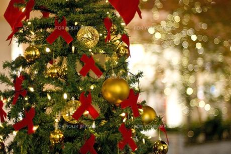クリスマスツリーとイルミネーション FYI00382132