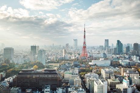 東京、芝公園 FYI00382301