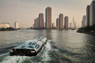 隅田川を下る水上バス FYI00382308