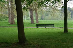 ロンドン、リージェントパークの芝生とベンチ FYI00382314