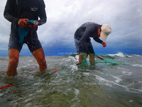 追込み漁 FYI00383012