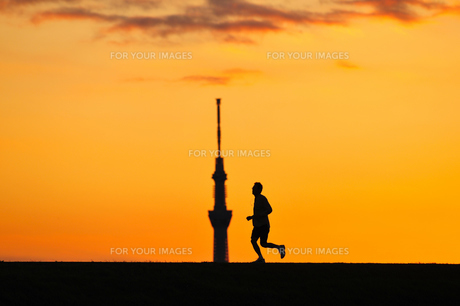 ジョギング FYI00389946