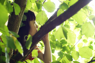 木と女の子 FYI00404940