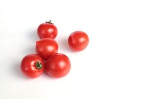 トマト FYI00406309