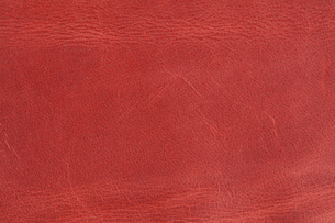 皮革 革 革製品 天然皮革 FYI00410365