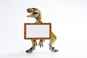 ティラノサウルスの掲示板 FYI00411698