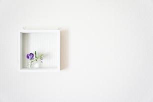 花の額縁 FYI00417798