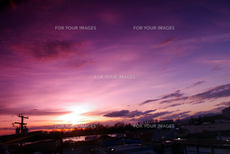紫の夕日の素材 [FYI00417874]