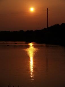 夕日と水面 FYI00419336