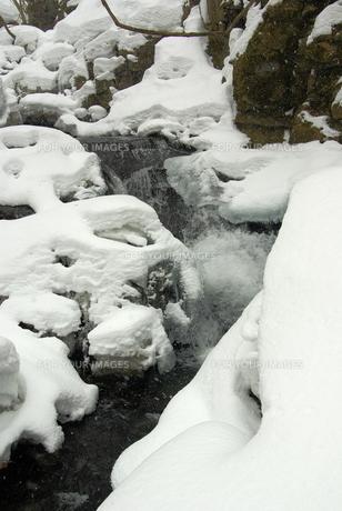 冬の奥入瀬 FYI00420132