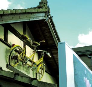 黄色い自転車 FYI00421271