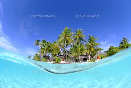 半水面の南の島 FYI00424024