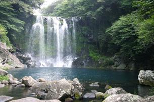 済州島、天帝の滝 FYI00425940