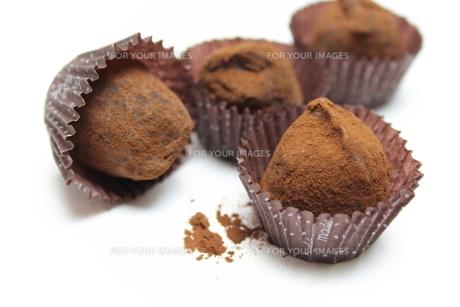 チョコレートトリュフ FYI00428679