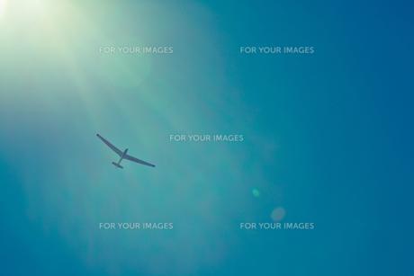 空を舞うグライダー FYI00429908