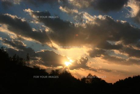 夕日の影絵 FYI00430026