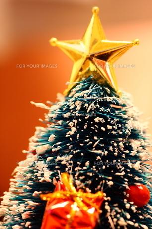 クリスマスツリー FYI00430054