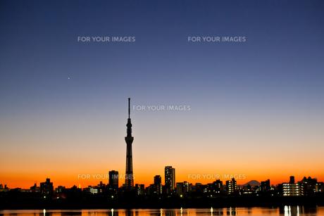 夕暮れの東京 FYI00430628